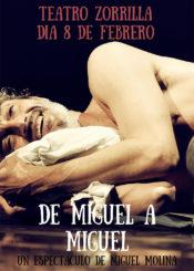 08 de Febrero de 2020: De Miguel a Miguel / Sala Experimental